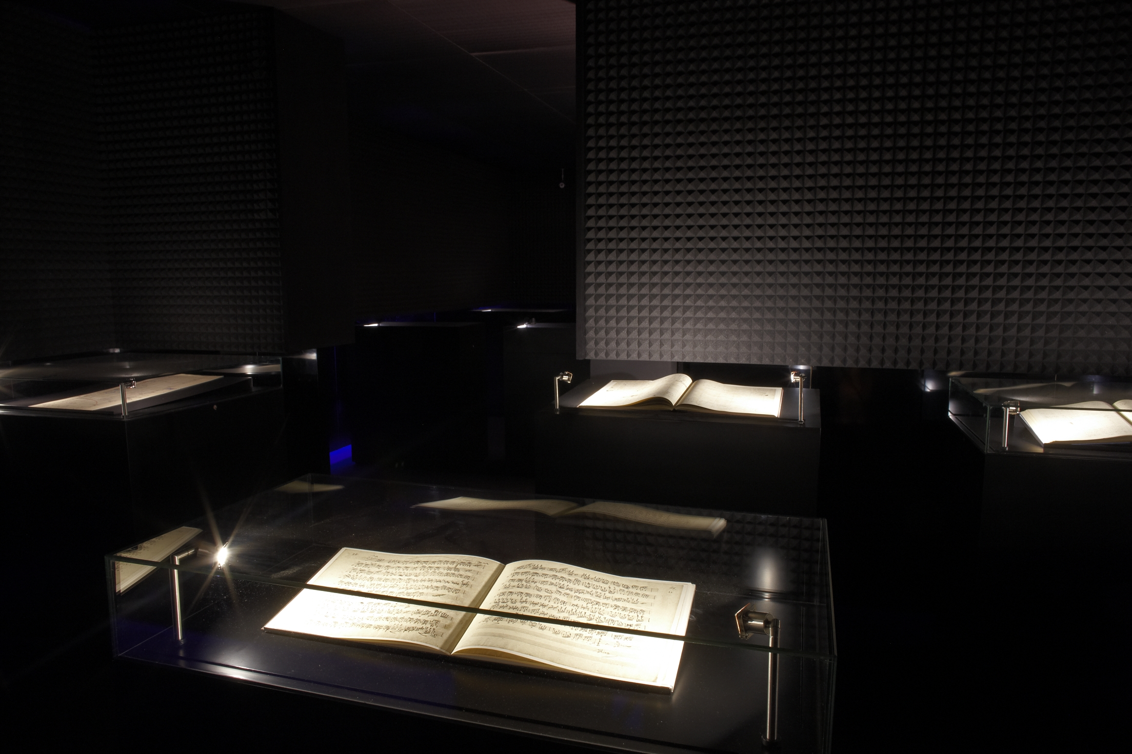 "Exhibition ""That's Opera"" scores room"